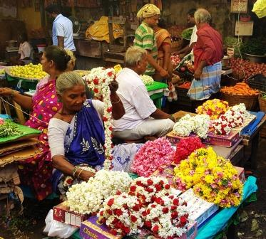 fleurs madurai india