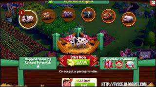FarmVille 2: Country Escape, various breeds of pigs, farmland