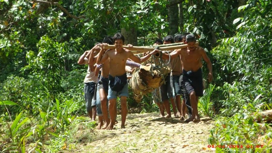 HUTAN, Kawasan adat Ammatoa - THE KOMPAT