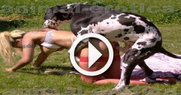 indian movies: Dogs mating with girls Dogs trying to mate ...