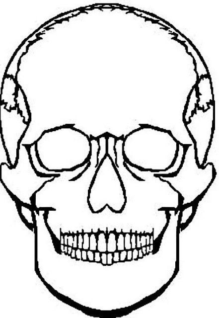 Coloring Pages For Girls: Skull Coloring Pages