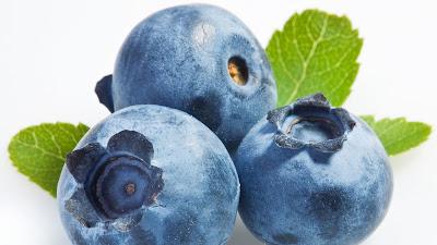 gambar buah blueberry