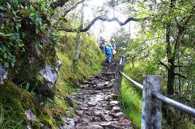 jalan menuju puncak gunung lawu