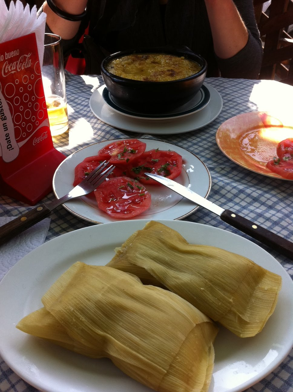 Chilena Tipica Comida