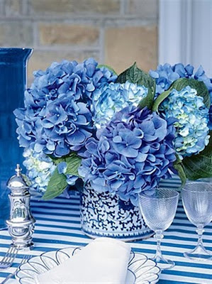 1 Azul & Branco