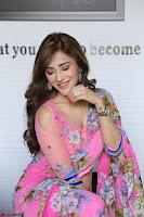 Angela Krislinzki Rogue Movie Fame Telugu Actress in Saree Backless Choli 024.JPG