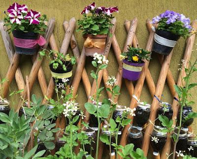 Tự tạo một vườn hoa rực rỡ sắc màu trên sân thượng hoặc ban công