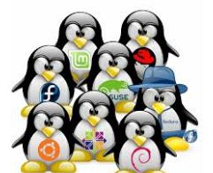 Vivaldi Linux Descargar Gratis