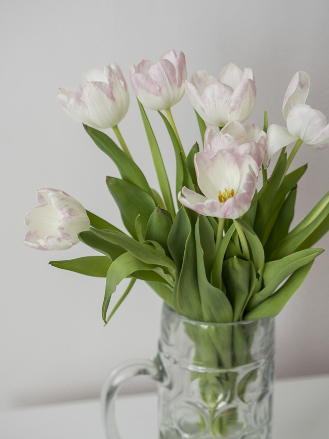 co zrobić by tulipany były dłużej świeże