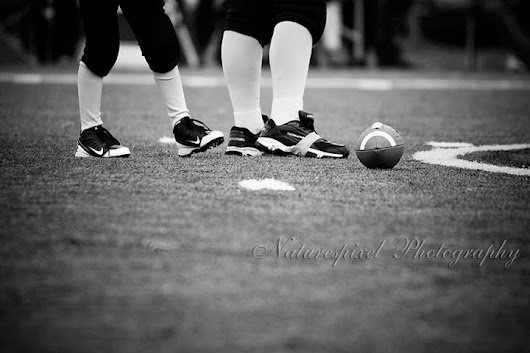 naturespixel photography: Cobras v's Rams