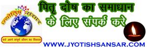 ज्योतिष द्वारा पितृ दोष का समाधान, भारतीय ज्योतिष द्वारा पितृ दोष का निवारण