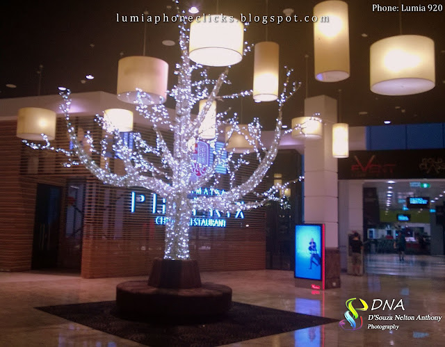 Encountered this tree at one of the malls I was shopping in. It was like I had attained nirvana. A white, glowing tree right at the far end of the mall was like the final destination of one's prayers, sacrifice and meditation.
