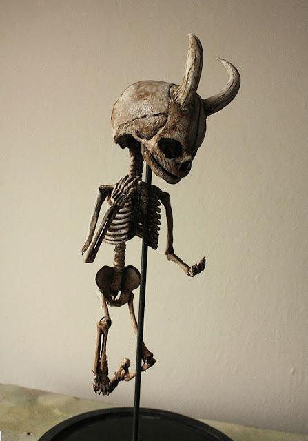 Extraño esqueleto encontrado en la casa de Merrilyn