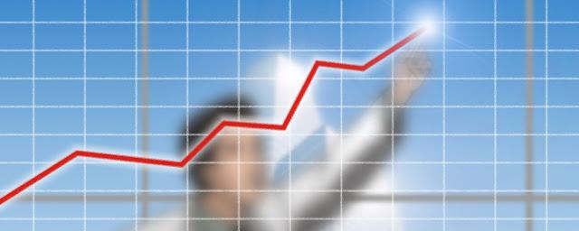 Elasticidad y economia