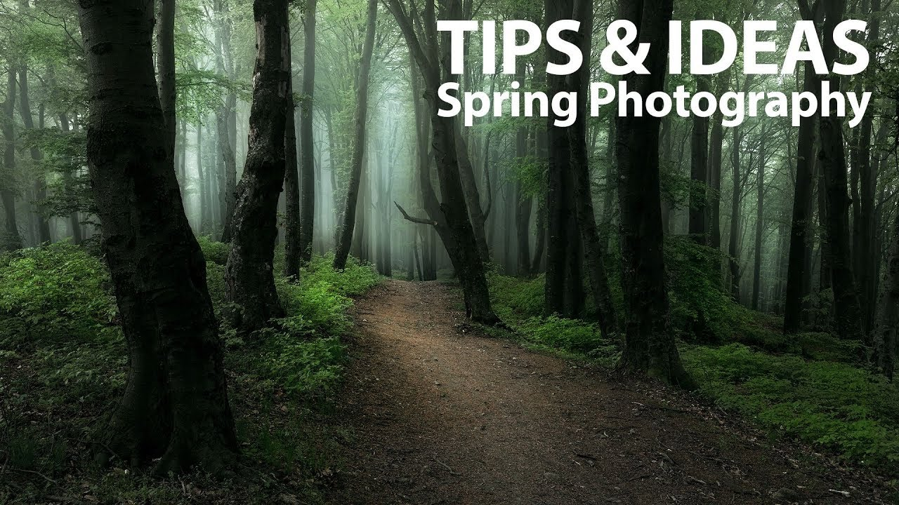 13 Ideas & Tips for Spring Landscape Photography