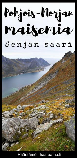 Senjan saari