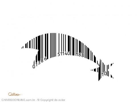 quinho4.jpg (480×360)