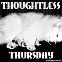 Thoughtless Thursday blog hop badge