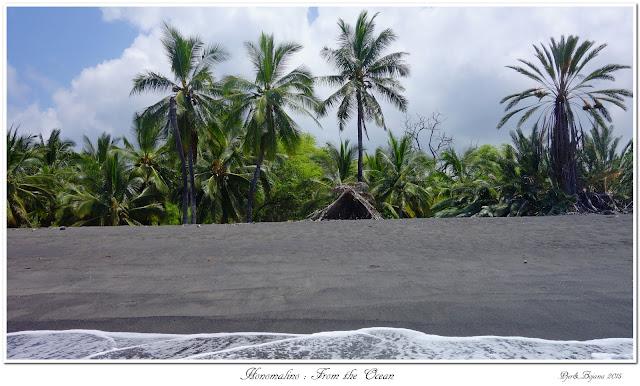 Honomalino: From the Ocean