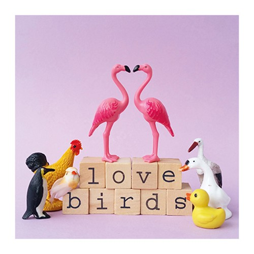 https://www.shabby-style.de/flamingo-grusskarte-love-birds