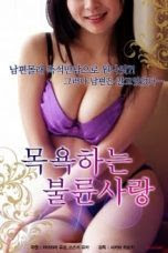Housewives Creampie Affairs 2 (2018)