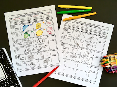 Constants and Hypotheses Coloring Worksheet