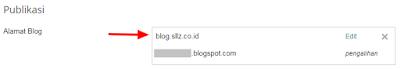 Success Custom Subdomain To Blogger