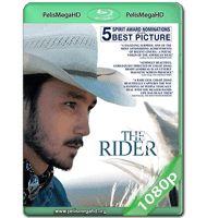 THE RIDER (2017) WEB-DL 1080P HD MKV ESPAÑOL LATINO