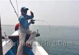 Jigging With Gomoku Rod Strike GT
