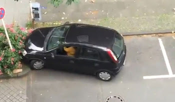 Küçücük Arabayı Koca Yere Park Edemeden Gitti