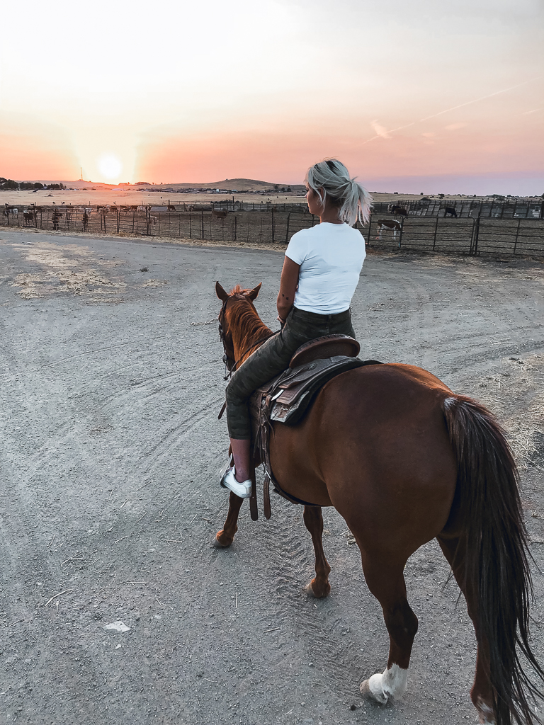 twisselman trail rides