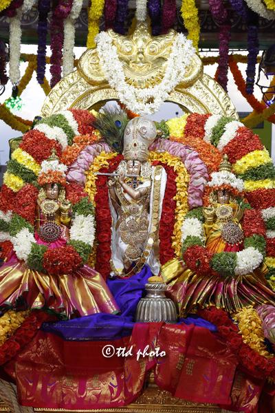 తిరుచానూరు శ్రీ పద్మావతి అమ్మవారి తెప్పోత్సవాలు ప్రారంభం
