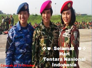 hari-tentara-nasional-indonesia-5