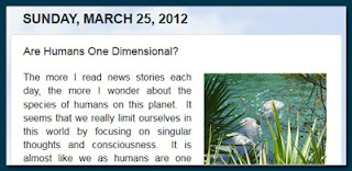http://mindbodythoughts.blogspot.com/2012/03/are-humans-one-dimensional.html