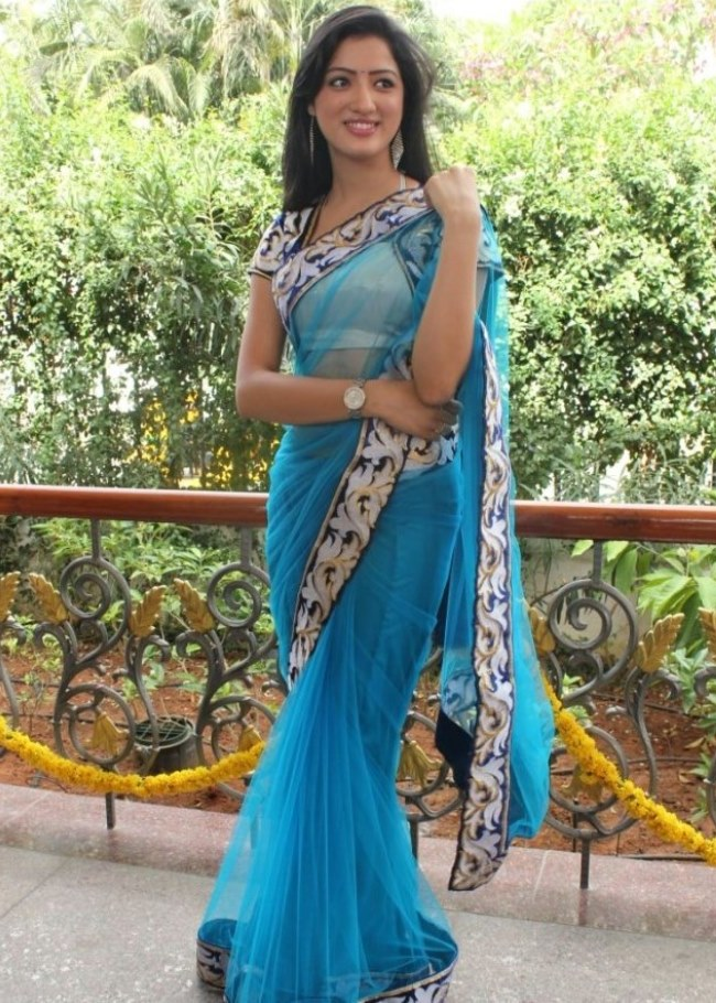 Richa Panai Hip Navel In Transparent Blue Saree