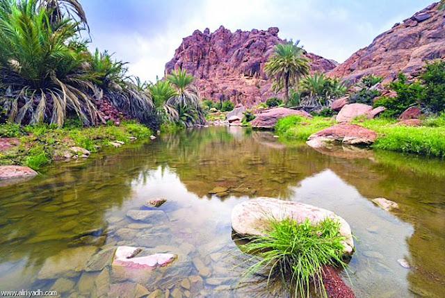 وصف الطبيعة الجغرافية للمملكة العربية السعودية