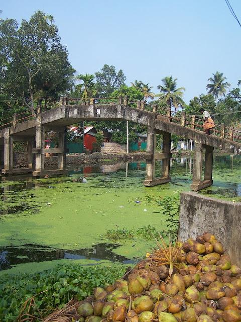 Pont à Alappuzha