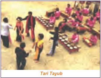 Fungsi Tari sebagai Sarana Hiburan contohnya tari tayub