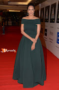 CIneMAA Awards Red Carpet-thumbnail-5