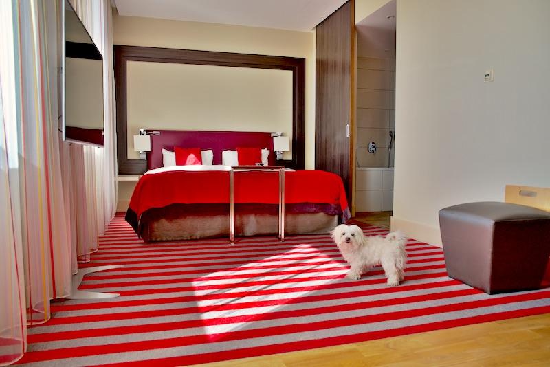 Mercure Warszawa Grand hotel z psem, hotel warszawa dogfriendly, wakacje z psem warszawa, hotel z psem, hotel pies