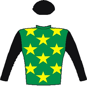 LEGAL EAGLE - Horse - South Africa - Emerald green, yel.stars, black sleeves and cap
