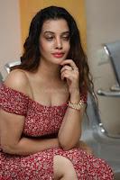 Diksha Panth in a Deep neck Short dress at Maya Mall pre release function ~ Celebrities Exclusive Galleries 131.JPG
