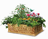 The Little Acre Raised-Bed Vegetable Garden (Original 3'x4'x9