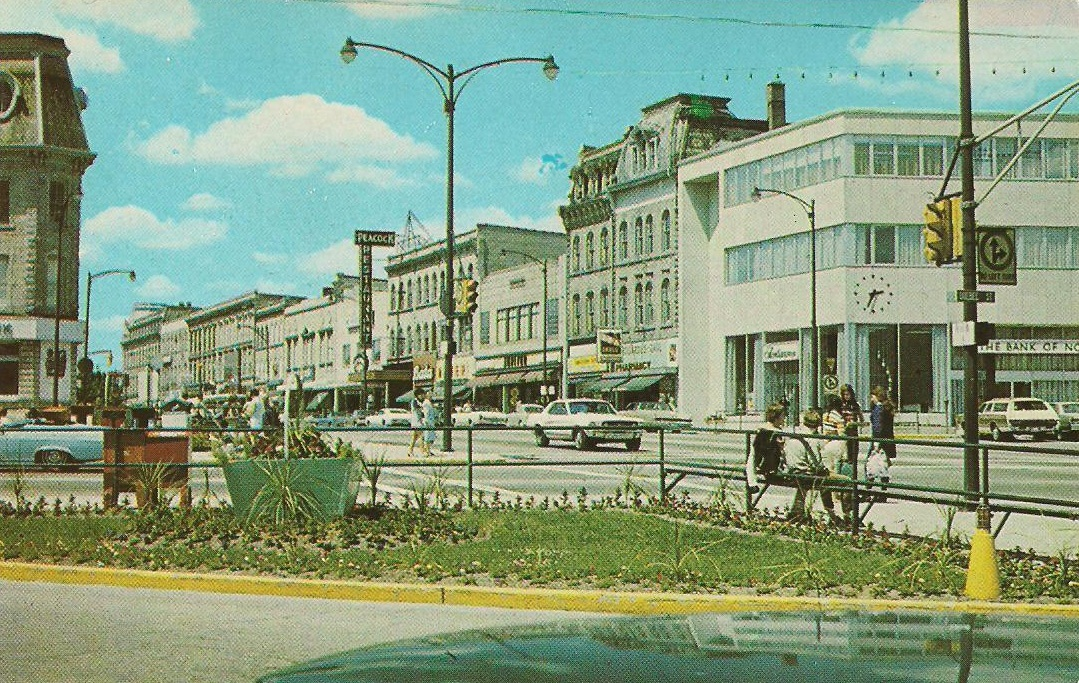 Royal Cat Records 1970s Guelph Postcard