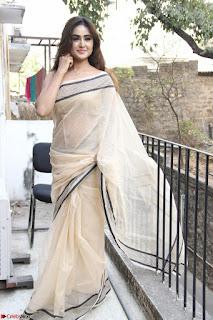 Sony Charishta in Brown saree Cute Beauty   IMG 3593 1600x1067.JPG