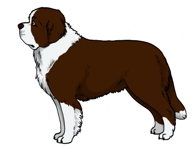 Furry Paws Dog Breed Colors Saint