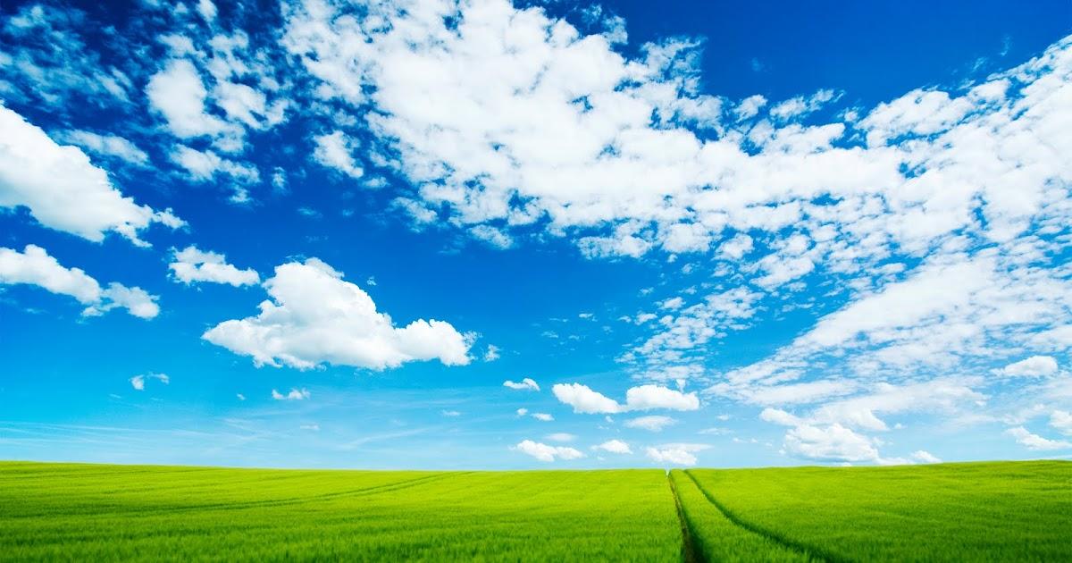 HD IPhone & Cute Desktop Wallpapers: HD Nature Scene