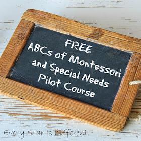 FREE ABCs of Montessori and Special Needs Pilot Course Reopened