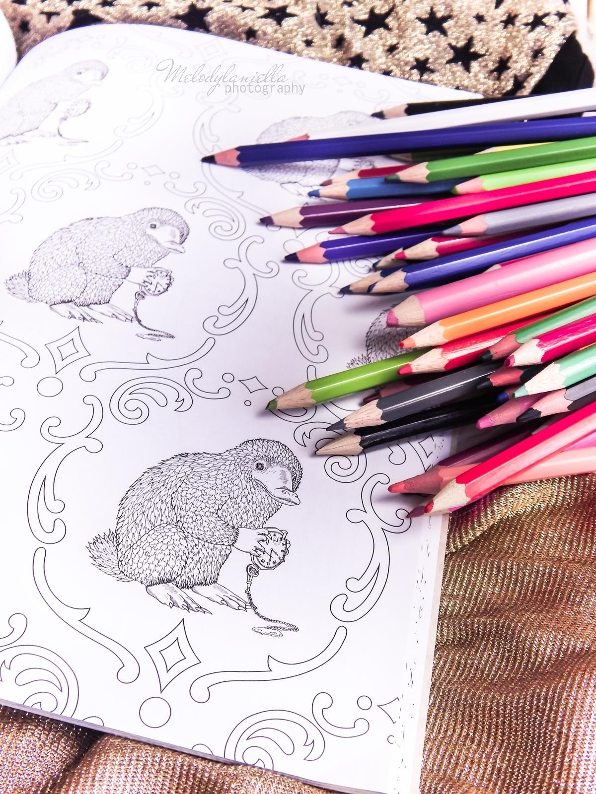 7  Konkurs ! Do wygrania 6 kolorowanek Fantastyczne zwierzęta i jak je znaleźć Magiczne zwierzęta kolorowanka oraz Magiczne miejsca i postacie kolorowanka. HarperCollins. Melodylaniella harry potter