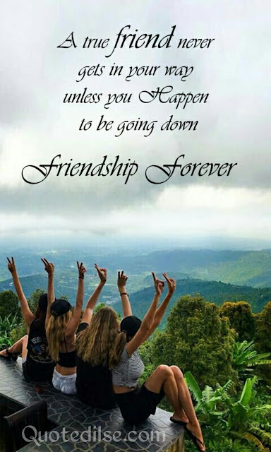 short friendship quotes in english